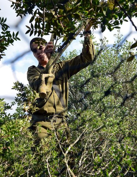 Le camouflage fait désormais partie des techniques enseignées au Centre de Formation à la Lutte Anti-Terroriste