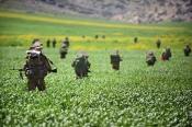 Des soldats de la Brigade Kfir en exercice dans la Vallée du Jourdain